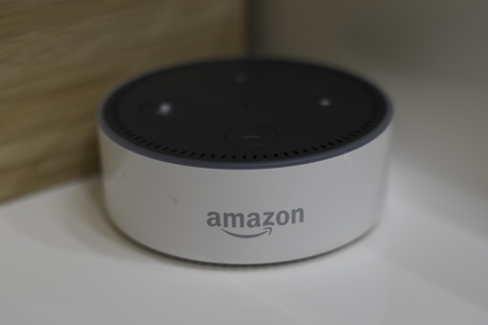 photo of alexa dot